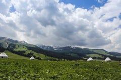 En el OBO del prado Foto de archivo
