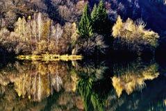 En el otro banco del río 1 fotografía de archivo
