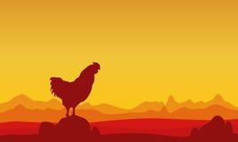 En el paisaje del gallo de la puesta del sol de siluetas Fotos de archivo libres de regalías