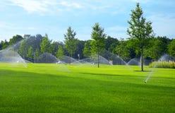 En el parque. Imagenes de archivo
