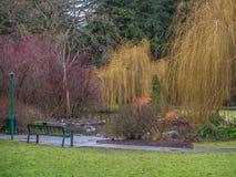En el parque Foto de archivo libre de regalías