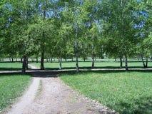 En el parque de la ciudad de Togliatti Imagenes de archivo