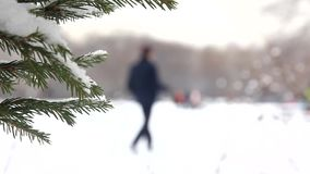 En el parque de la ciudad del invierno metrajes