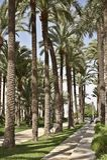 En el parque Santa Pola de la ciudad Imagen de archivo libre de regalías