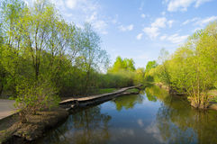 En el río Imagenes de archivo