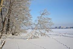 En el río 5 Foto de archivo libre de regalías