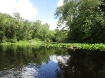 En el río Imagen de archivo