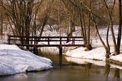 En el río del parque del invierno Imagen de archivo