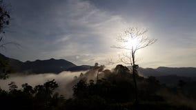En el sol de la mañana Foto de archivo