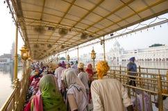 En el templo de oro, Amritsar, la India Imagenes de archivo