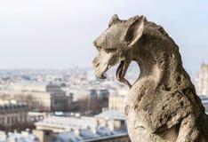 En el top de Notre Dame Imágenes de archivo libres de regalías