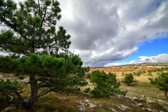 En el top de una montaña en Crimea Imagen de archivo