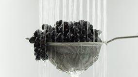 En el vídeo vemos las uvas en un tamiz, caída del agua del top en solos jets, movimientos de la cámara de la parte inferior al to almacen de video