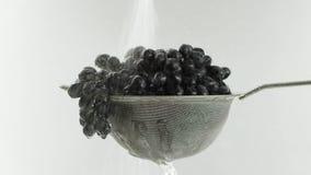 En el vídeo vemos las uvas en un tamiz, caída del top en un jet, fondo blanco del agua almacen de metraje de vídeo
