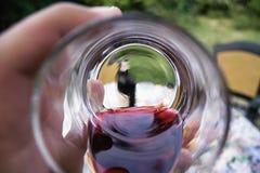 En el vino Veritas Fotografía de archivo libre de regalías