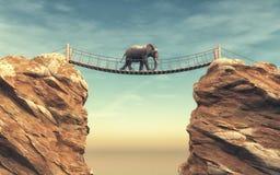 En elefant går på en träbro Fotografering för Bildbyråer