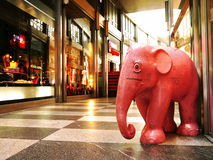 En elefant i rummet Royaltyfria Bilder