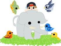 En elefant och små fåglar Arkivbilder