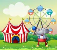 En elefant på karnevalet Fotografering för Bildbyråer