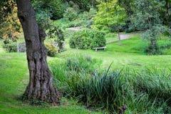 En engelsk trädgård Royaltyfria Bilder
