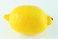 En enkel citron på vit bakgrund Fotografering för Bildbyråer