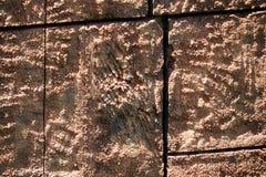 En enkel tegelstenvägg Royaltyfria Bilder