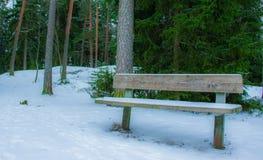 En ensam bänk i skogen arkivfoton