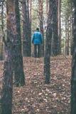 En ensam grabb i en pinjeskog i hösttiden Arkivfoton