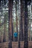 En ensam grabb i en pinjeskog i hösttiden Arkivbild
