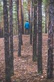 En ensam grabb i en pinjeskog i hösttiden Royaltyfri Foto