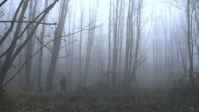 En ensam man som bort går i en dimmig skog FDV stock video