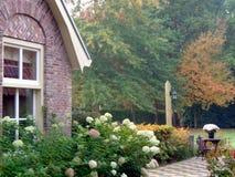 En färgglad trädgård i höst royaltyfri fotografi