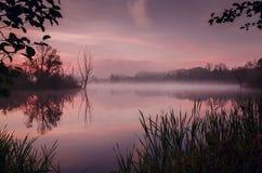 En färgrik soluppgång Fotografering för Bildbyråer