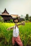 En fågelskrämma som bär thailändsk kläder i en risfält med det thailändska huset i bakgrunden arkivbild