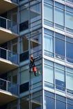 En fönsterpackning som gör ren fönstret av en hög löneförhöjningbyggnad royaltyfri foto