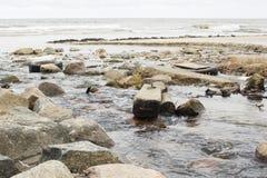 En förorenad flod som flödar in i världshavet Arkivfoto