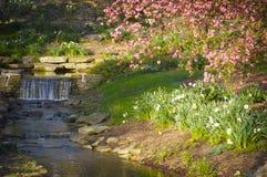 En försiktig vattenfall som går in i en ström med rosa färger, fjädrar blommor Arkivfoto