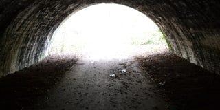 En förtrollad tunnel Royaltyfria Bilder