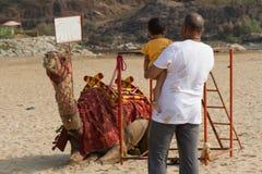 En fader med lite dottern som beundrar en kamel på stranden på en varm dag Arkivbilder