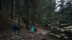 En familj med barn promenerar lutningen av en tät skog stock video
