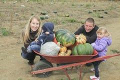 En familj på ett fält med pumpabakgrund Arkivfoto