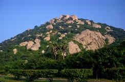 En fantastisk kombination av vaggar och träd som utgör berget Arkivbilder