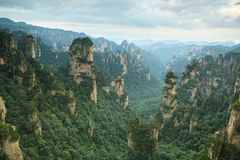 En farlig momentutkik i den Zhangjiajie nationalparken Royaltyfri Bild