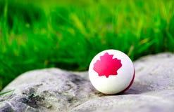 En fast rubber vit boll som dras på ett lönnlövsymbol av Kanada Bakgrunden är grönt gräs Arkivbild