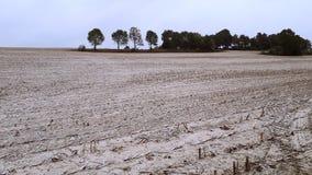 En faveur de l'agriculture organique et écologique l'utilisation de la chaux crue comme engrais dans la culture photos stock