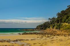 En favorit- surfa fläck på den australiska Stillahavskusten i Apoll royaltyfri foto