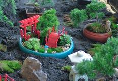 En Feng-shuiträdgård Arkivbilder