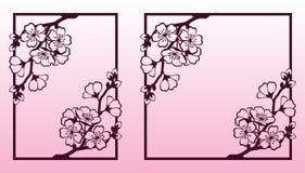 En filial av körsbäret eller sakura blomningar Bitande mallar för laser Fotografering för Bildbyråer