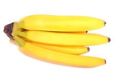 En filial av ljusa gula tropiska bananer som isoleras på en vit bakgrund Rör och nya bananer bär fruktt tropiskt Arkivfoton