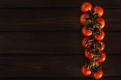 En filial av nya röda tomater på en trämörk bakgrund isolerade bakgrund Lekmanna- lägenhet Höger närbildsikt direkt Utrymme för Arkivbilder